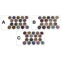 Rivaj 18 In 1 Terakota Eye Shadow Kit Colour Combinations